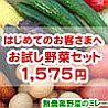 無農薬野菜ミレーお試し野菜セット